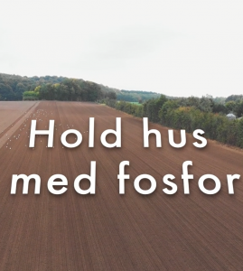 Hold hus med fosfor_Film2