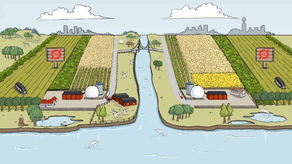 Animeret illustration af fosforscenariet.